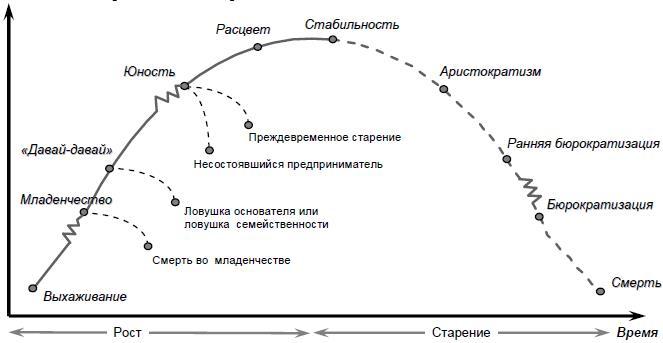 Циклы развития организации И. Адизеса