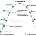 Седьмой этап развития компании — Аристократия
