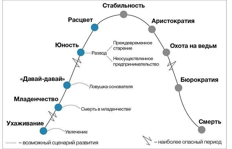 Седьмой этап развития компании - Аристократия